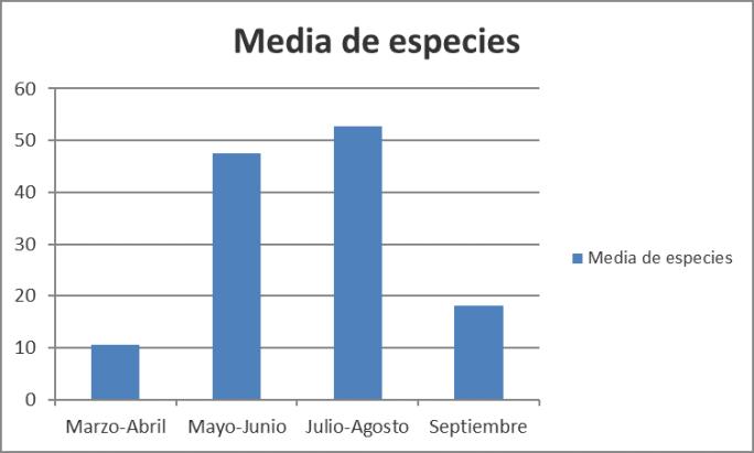 ESPECIES MARIPOSAS