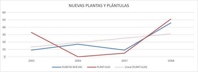 NUEVAS PLANTAS